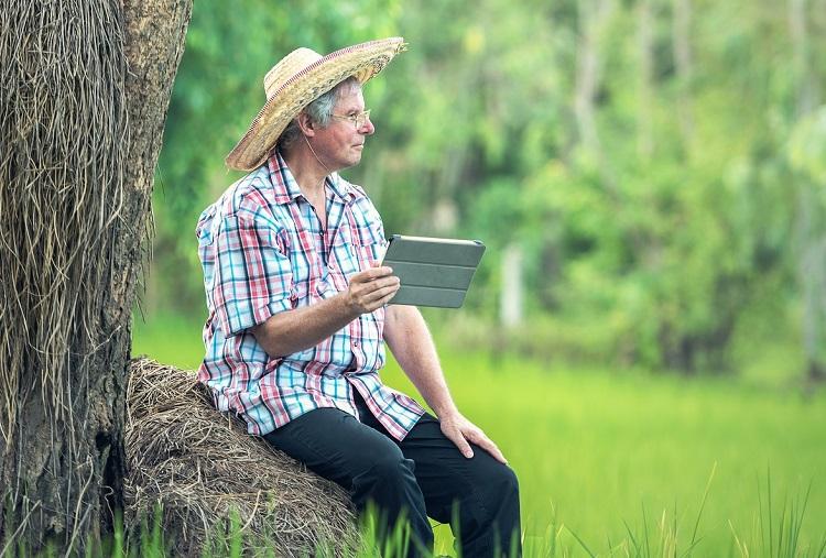 La brecha de conectividad se agranda entre la Colombia rural y la urbana