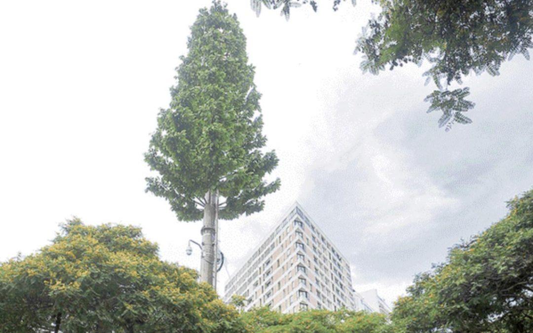Perú: En 2019, empresas deberán instalar solo antenas 'tipo árbol' en parques (12 10, 2018)